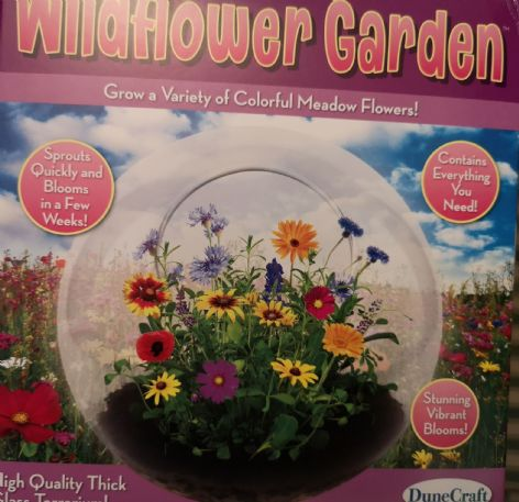 Wildflower Garden Glass Terrarium
